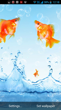 Скачать живых обои для андроид золотые рыбки
