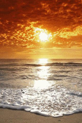 Sunset Paradise Live Wallpaper Free Download Disaappssunsetparadise